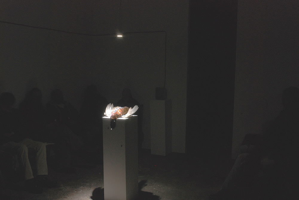 Urbanomic Events: Russell Haswell, Recorded As It Actually Happened, 21 March 2009, Urbanomic Studio, Falmouth