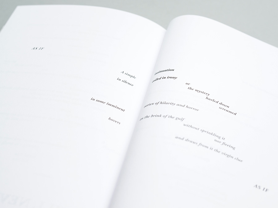 Quentin Meillassoux, 'The Number and the Siren', published by Urbanomic (detail)