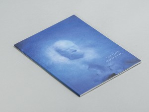 Torture Concrete by Reza Negarestani, published by Sequence Press