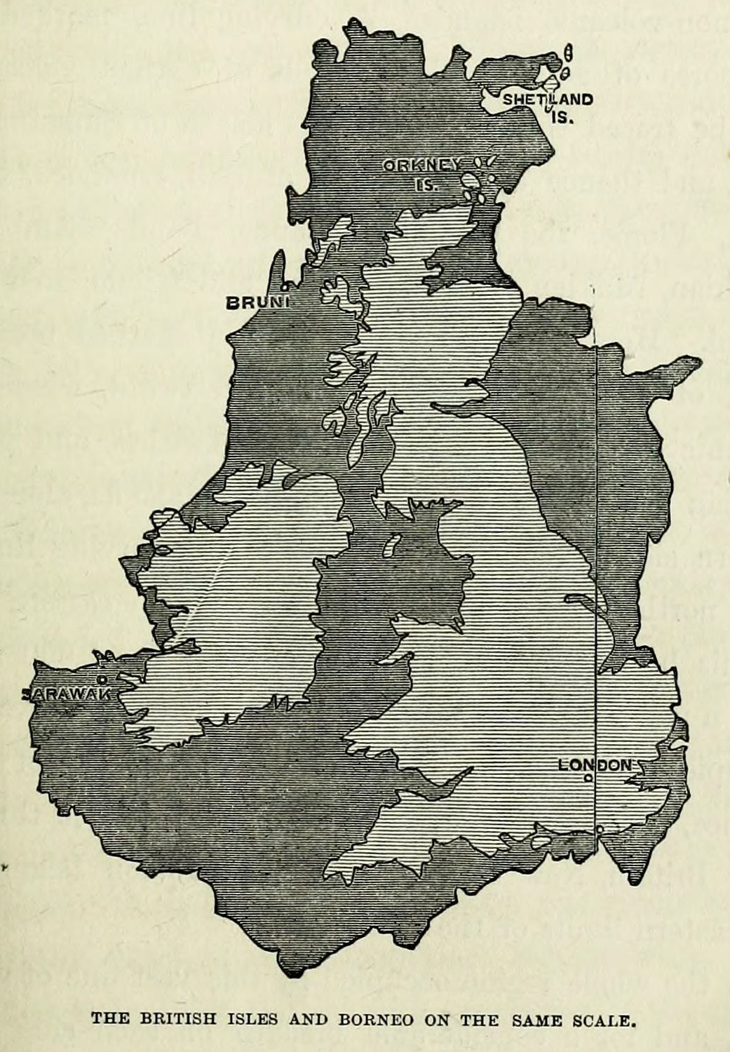 Ch 4 Borneo and British Isles (from BHL)